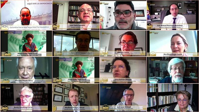 Pantalla dividida con los rostros de los participantes en la audiencia pública